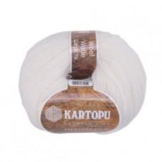 010 Пряжа Kartopu Merino Wool